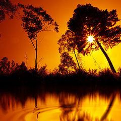 "photo ""Nature reflection"""