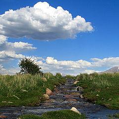 """фото """"Ручей  долины"""""""
