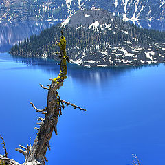 """photo """"At the edge of Crater Lake"""""""