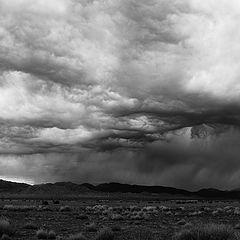 """фото """"A Desert Storm"""""""