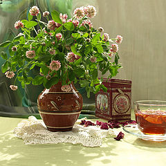 """фото """"Розовый клевер и розовый чай."""""""