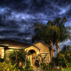 "photo ""A house with two palms"""