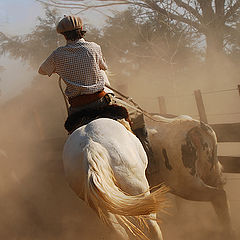 "фото ""riding the dust.."""