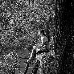 """фото """"Девочка на дереве"""""""