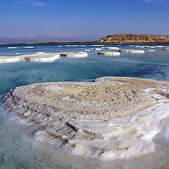 """фотоальбом """"Dead Sea"""""""