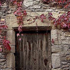 "фото ""la puerta"""