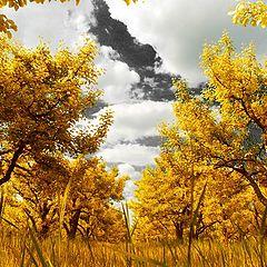 """photo """"Deep autumn"""""""