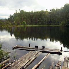"фото ""Лесное озеро"""