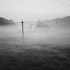 """фото """"*** (утренняя туманная со столбами и проводами)"""""""
