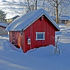 "photo ""last winter"""