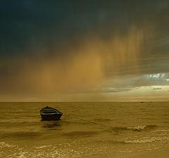 """фото """"В Ритме Дождя"""""""