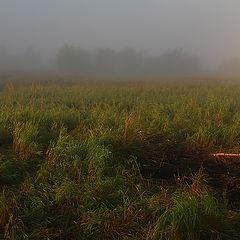 """фото """"Туманное утро в походе"""""""