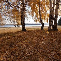"""фото """"Осень / 0189_0183"""""""