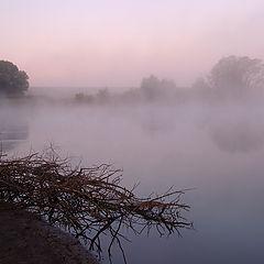"""фото """"...туманное утро сентября..."""""""