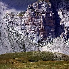 "photo ""Mountain grazing"""