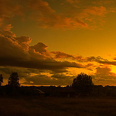 "photo ""Summer. Evening ..."""