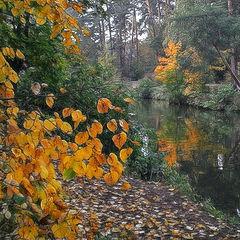 """photo """"Autumn"""""""