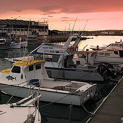 """photo """"Dusk at the Boat Marina"""""""