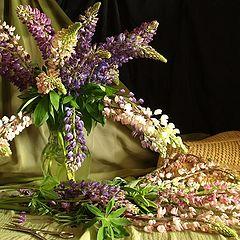 "фото ""Цветы из сада."""