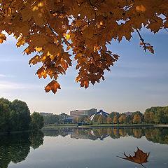 "photo ""Dance autumn leaf"""