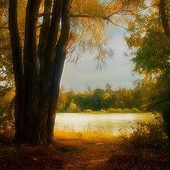 """фото """"Осенний полонез # 3"""""""
