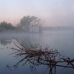 """фото """"Осенний туман"""""""