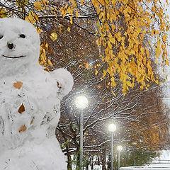 "фото ""А снег пришел в город !"""