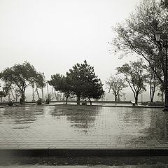 "фото ""сквер . дождь."""