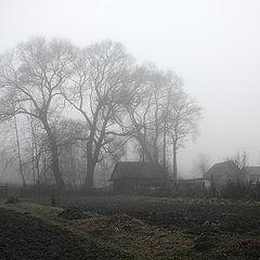 """фото """"Ноябрьская, туманная"""""""