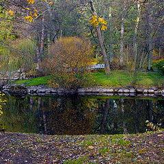 """photo """"Autumn abstraction"""""""