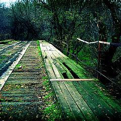 """фото """"Дорога в Silent Hill"""""""