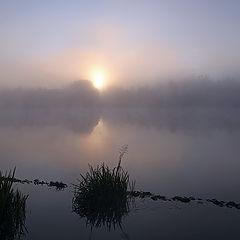 """photo """"Misty Dawn"""""""