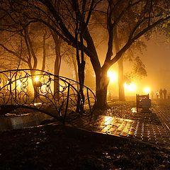 """фото """"осень, сквер, туман"""""""