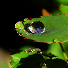 """photo """"Just a drop of water in an endless sea..."""""""