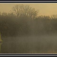 "фото ""Cool Mornings"""