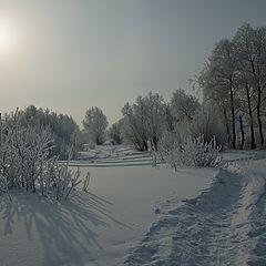 """фото """"Снежной тропой..."""""""
