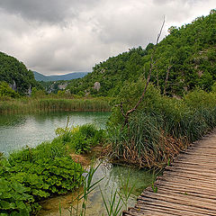 """photo """"Planked footway of Plitvice-4"""""""