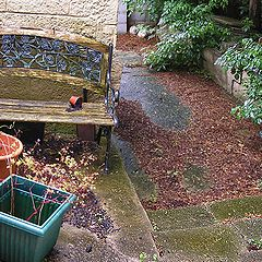 "photo ""English garden-2.  Depression."""