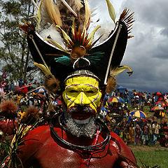 "фото ""A Huli Tribe man in a ceremonial wig, Mount Hagen Cultural Show"""