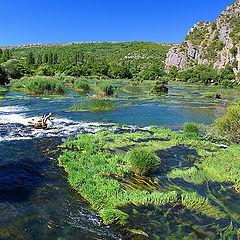 "photo ""Krka - river"""