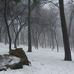 "фото ""Туманная перспектива"""