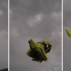 """фото """"Volare!"""""""