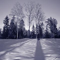 """фото """"Зимнее настроение"""""""