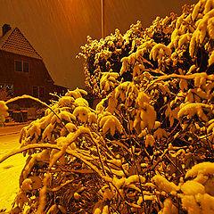 """photo """"First Copenhagen Snow 2009"""""""