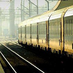 """фото """"golden train"""""""