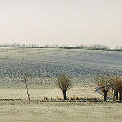 "фото ""first winterday"""