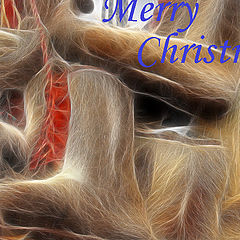 "photo ""Merry Christmas!"""