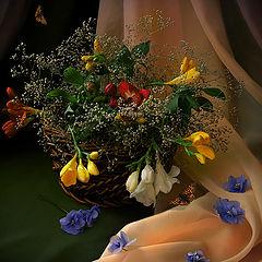 "photo ""May Evening"""