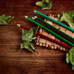 """фото """"Сухие листья"""""""