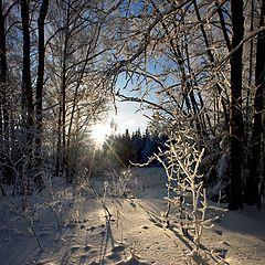 """фото """"Морозный закат"""""""